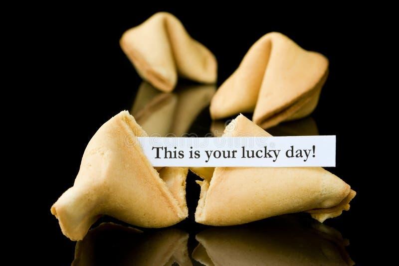 Het koekje van het fortuin: Dit is uw gelukkige Dag! stock afbeelding