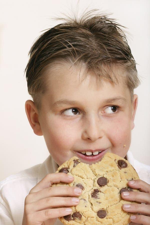 Het koekje van het monster stock fotografie