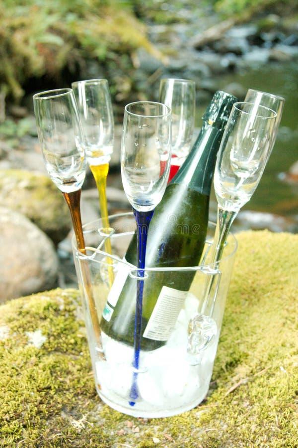 Het koelen van Champagne stock fotografie