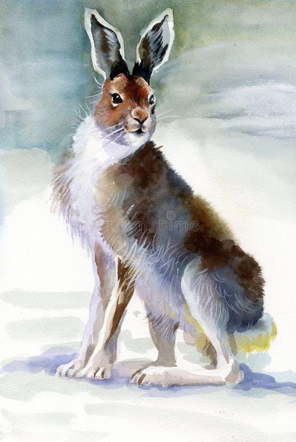 Het konijn van de winter stock illustratie
