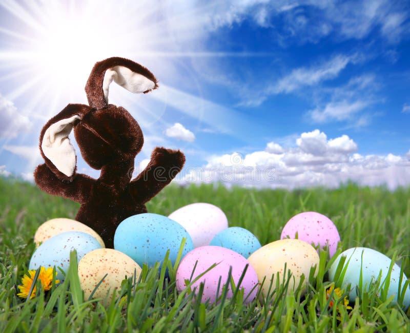 Het Konijn van het konijntje in het Gras met Pasen Gekleurde Eieren royalty-vrije stock afbeelding