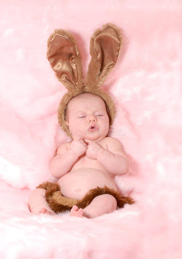 Het konijntje van de baby royalty-vrije stock foto's