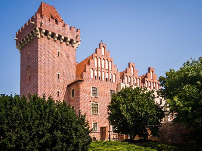 Het Koninklijke Kasteel in Poznan royalty-vrije stock foto's