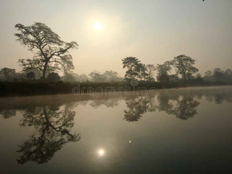 Het koninklijke Nationale Park van Chitwan - Nepal royalty-vrije stock fotografie