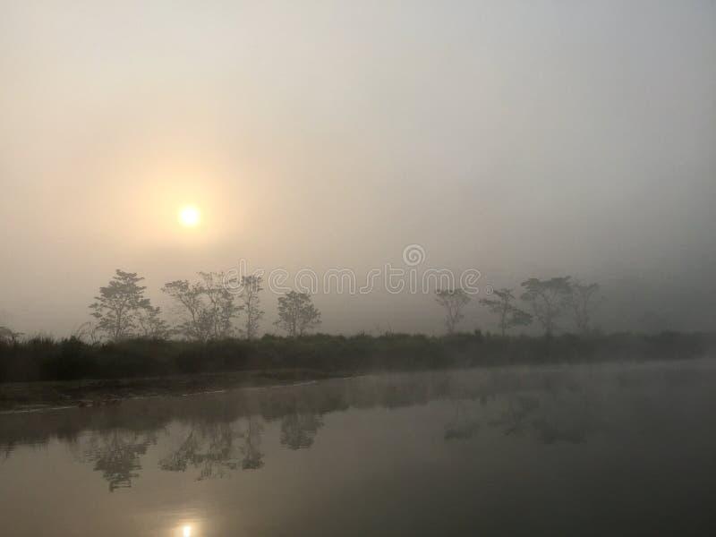 Het koninklijke Nationale Park van Chitwan - Nepal stock foto