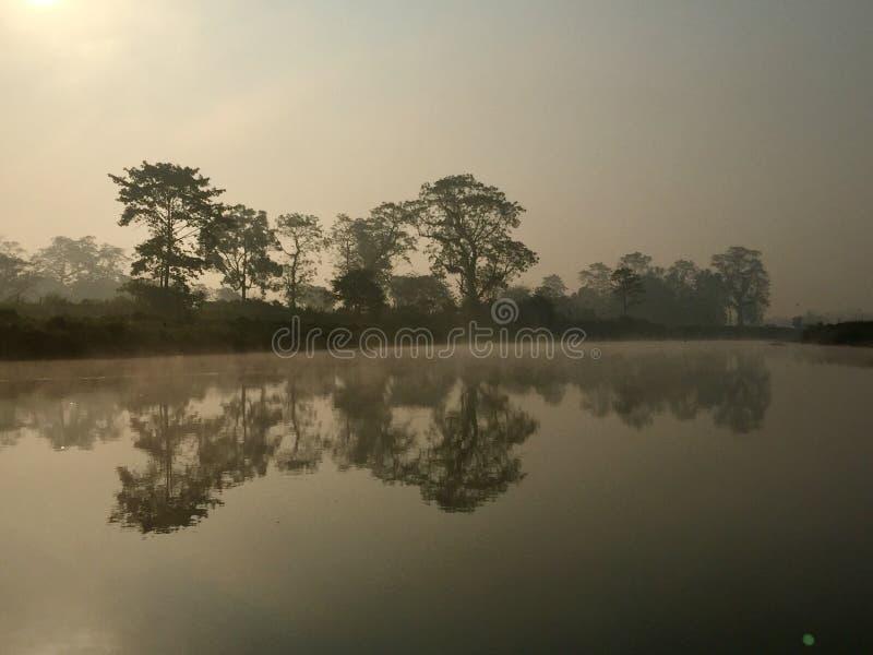 Het koninklijke Nationale Park van Chitwan - Nepal stock afbeelding