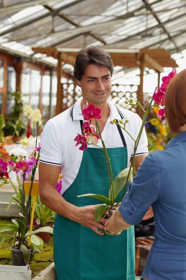 Het kopen van de vrouw orchideeën stock fotografie