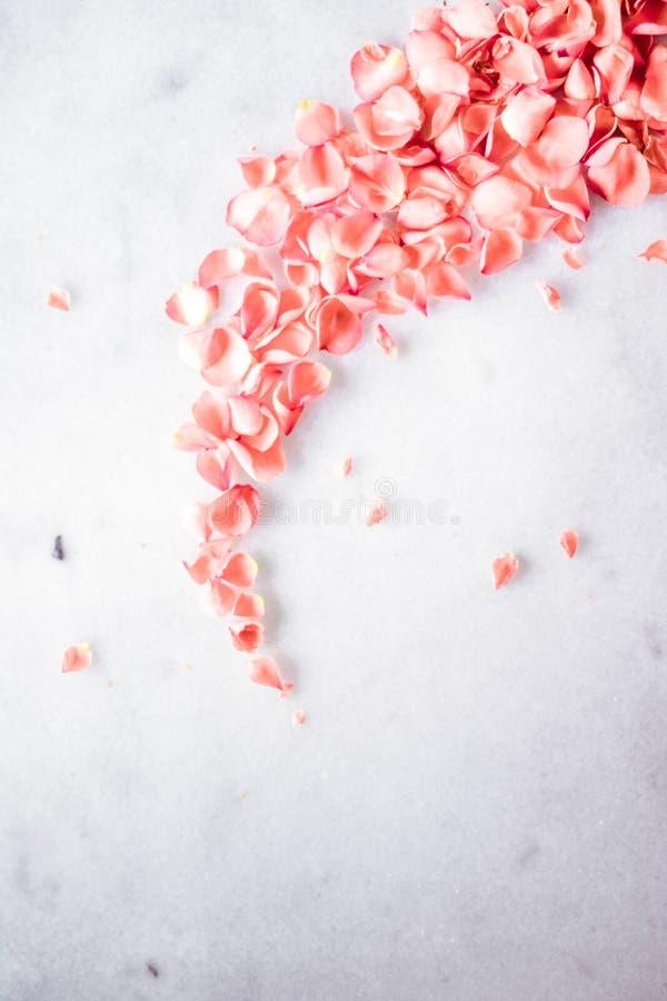 het koraal nam bloemblaadjes op marmer toe, kleur van het jaar - bloei achtergrond en vakantieconcept royalty-vrije stock afbeeldingen