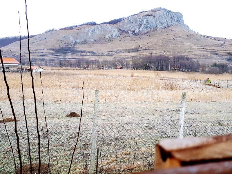het koude boshuis van de aardberg stock afbeeldingen