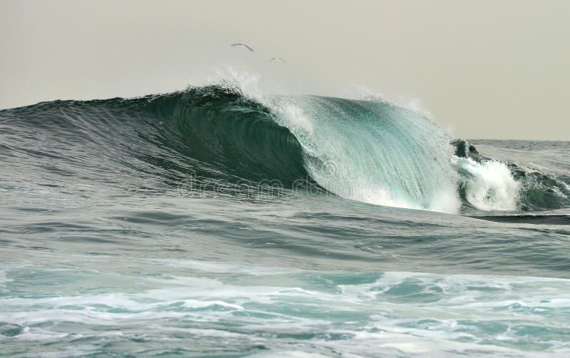 Het krachtige oceaangolf breken Golf op de oppervlakte van de oceaan Golfonderbrekingen op een ondiepe bank stock afbeeldingen