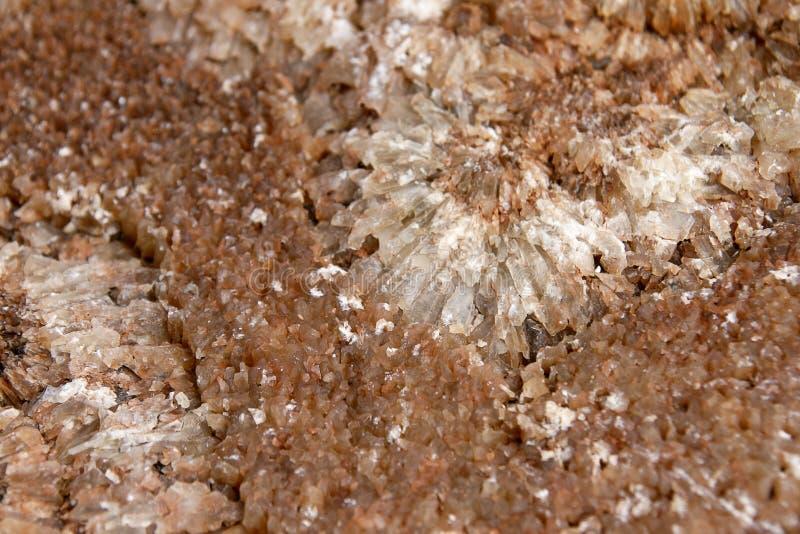 Het kristal van de bloem royalty-vrije stock afbeeldingen