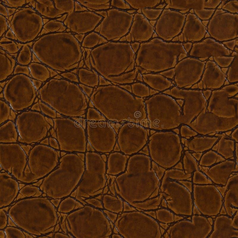 Het krokodilleer, kan als achtergrond gebruiken De naadloze vierkante textuur, betegelt klaar stock afbeelding