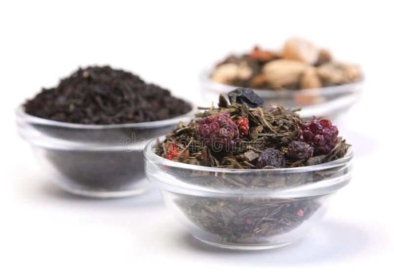 Het kruid van de thee stock afbeeldingen