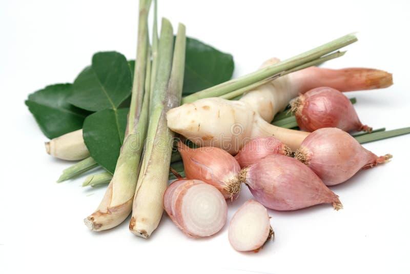 Het kruideningrediënten van het Tomyum Thaise voedsel stock afbeeldingen