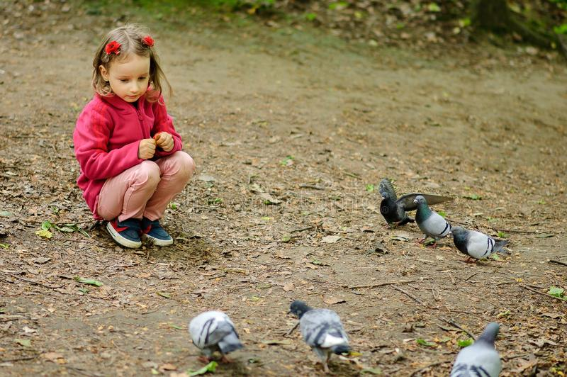 Het krullende Meisje voedt stedelijke duivenduiven in het park stock afbeeldingen