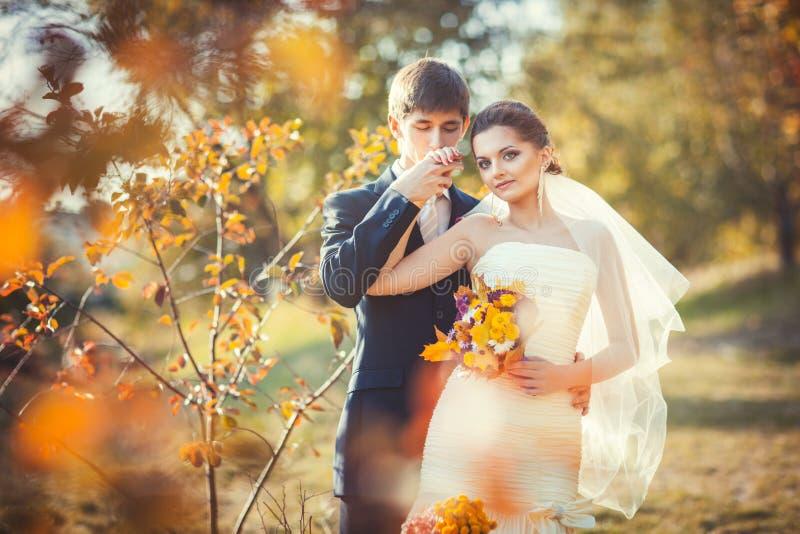 Het kussen van de bruidegom hand van bruid stock afbeeldingen
