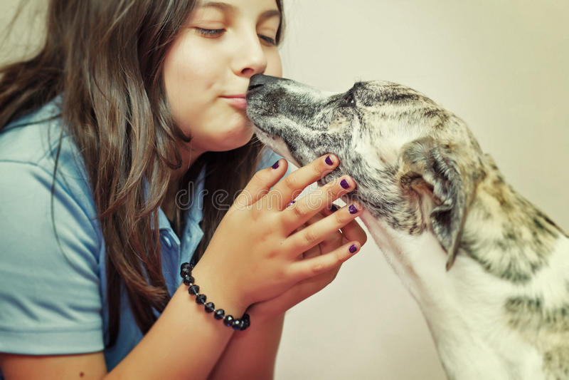 Het kussen van het meisje hond royalty-vrije stock fotografie