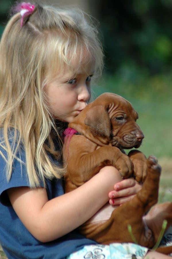 Het kussen van het meisje puppy stock afbeelding