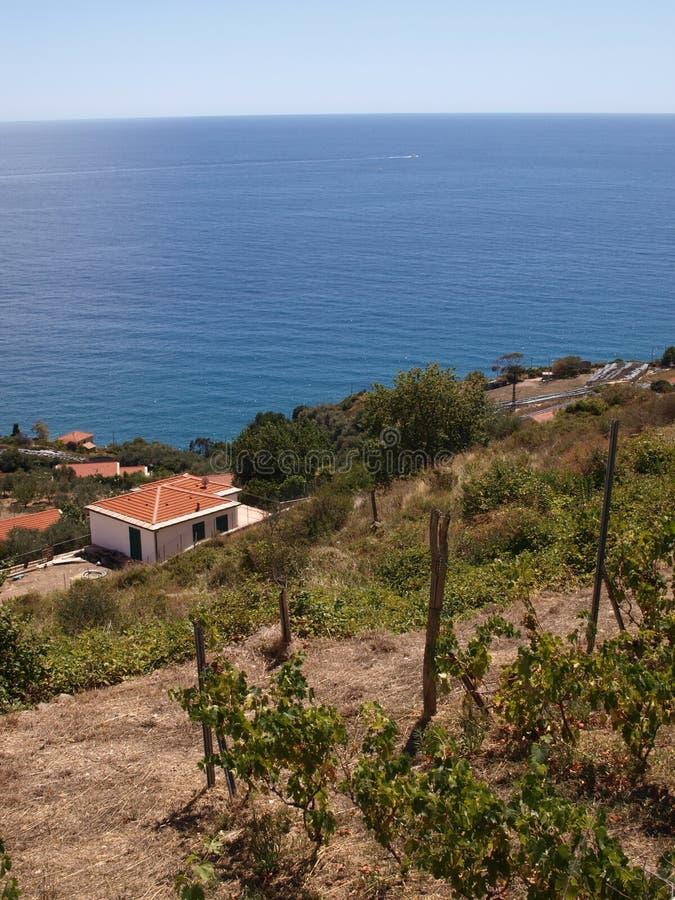 Het kustzeegezicht van Ligurië op heldere dag stock afbeelding