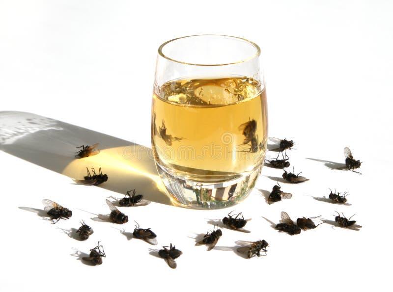 Het kwaad van alcohol royalty-vrije stock foto