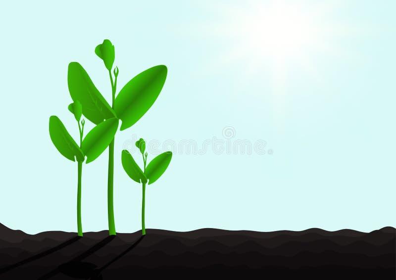 Het kweken van groene spruit van grond met zonlicht, milieuconcept vector illustratie