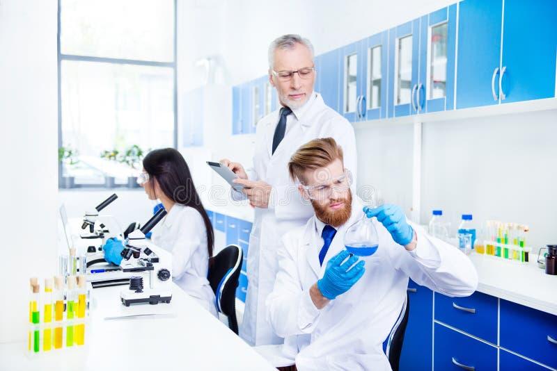 Het laboratoriumtrio werkt voor nieuw project De jongelui draagt royalty-vrije stock foto's