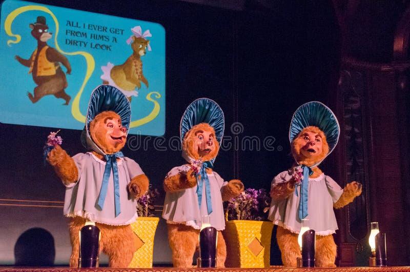 Het land draagt Jamboree - het Trio van de Zonbonnet royalty-vrije stock afbeeldingen