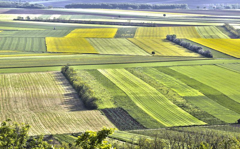 Het land van het de lentegebied royalty-vrije stock afbeeldingen