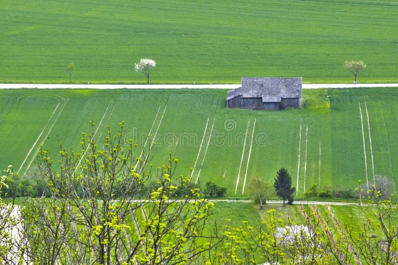 Het land van het de lentegebied stock fotografie