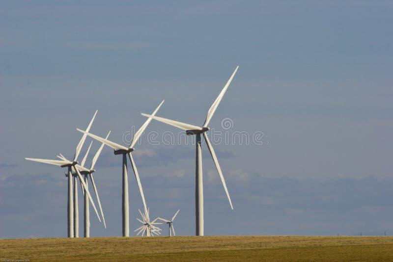 Het Landbouwbedrijf van de Molen van de wind royalty-vrije stock afbeeldingen