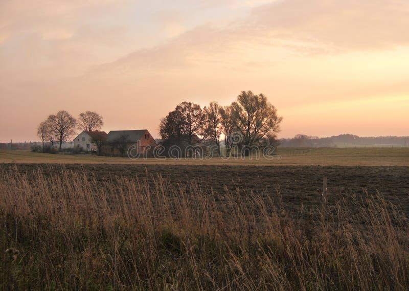 Het landbouwbedrijf van de ochtend royalty-vrije stock fotografie