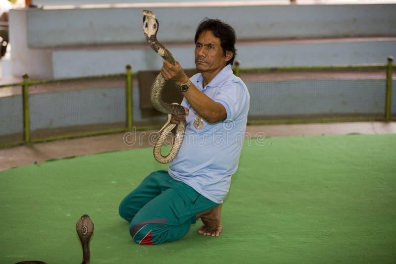 Het landbouwbedrijf van de slang in Bangkok royalty-vrije stock afbeeldingen