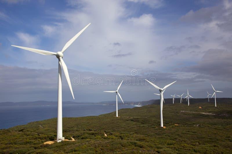 Het Landbouwbedrijf van de Wind van Albany stock foto's