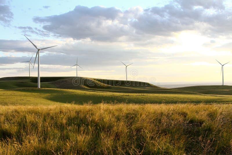 Het landbouwbedrijf van de windmolen bij zonsondergang royalty-vrije stock afbeeldingen
