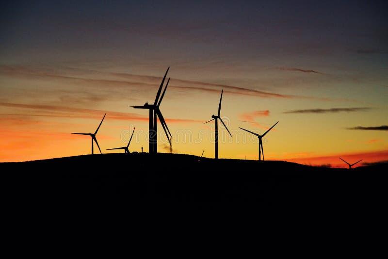 Het landbouwbedrijf van de windturbine bij zonsondergang stock foto