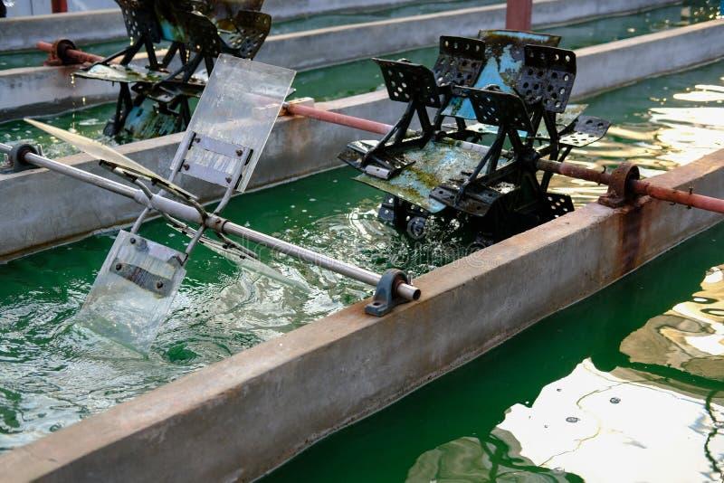Het landbouwbedrijf van Spirulina algen die voor het veroorzaken van dieetsupplement bewerken stock foto's