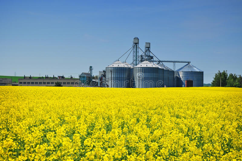 Het landbouwbedrijfsilo van de landbouw stock afbeeldingen