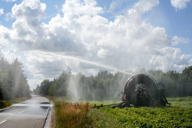 Het landbouwsysteem van de waterirrigatie stock fotografie