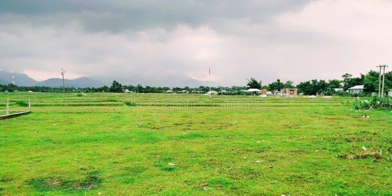 Het landelijke groene dorp van de Weergevenaard stock fotografie