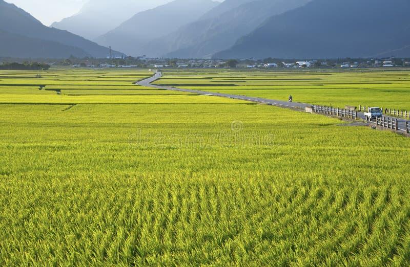 Het landelijke landschap van Taiwan royalty-vrije stock afbeeldingen