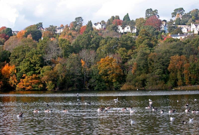 Het landpark van de valstrik royalty-vrije stock afbeelding
