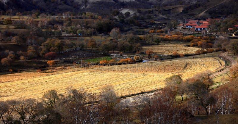Het landschap Bashang van China royalty-vrije stock afbeelding