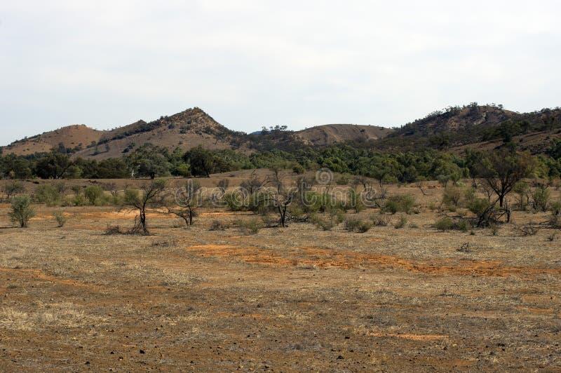 Het landschap langs Flinders ` strekt zich Manier, het noorden van uit Venter, Zuid-Australië royalty-vrije stock afbeelding