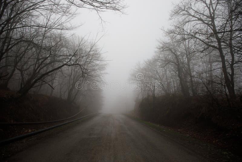 Het landschap met mooie mist in bos op heuvel of Sleep door een geheimzinnig de winterbos met de herfst gaat ter plaatse weg Weg royalty-vrije stock foto