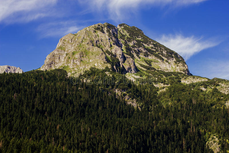 Het Landschap Montenegro van de aardberg stock afbeelding