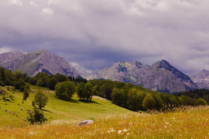 Het Landschap Montenegro van de aardberg royalty-vrije stock afbeelding