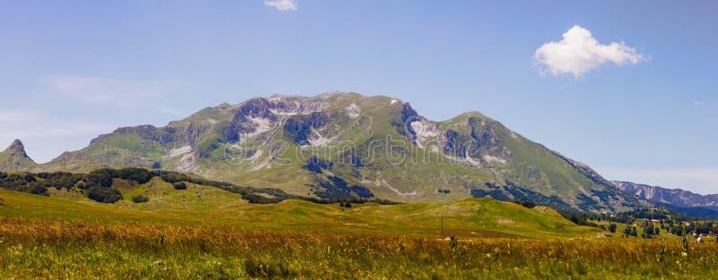 Het Landschap Montenegro van de aardberg stock afbeeldingen
