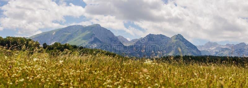 Het Landschap Montenegro van de aardberg royalty-vrije stock foto