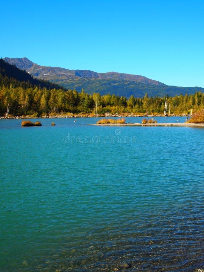Het Landschap van Alaska royalty-vrije stock afbeelding
