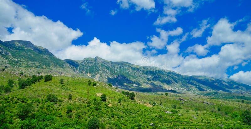 Het landschap van Albanië; Bergen, en Bos royalty-vrije stock fotografie